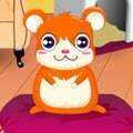Cute Hamster Daycare Games : Have you hugged your hamster today? Adopt a cute little hams ...