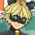 Miraculous Ladybug Cat Noir Games : Adrien Agreste is a student at College Francoise Dupont in P ...