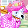 Fluffy Poodle Games : What if you could run your own fancy pet beauty sa ...