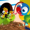 Bird House Games : Aren't these bird chicks and their birdie mom like ...