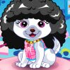 Pet Fashion Contest Games : Pet fashion contest will be hold today. You must want your pet more fashion and  ...